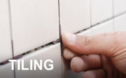 Edinburgh and Stirling Tiler